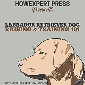 Labrador Retriever Dog Raising & Training 101 Audiobook