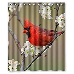Classic Red Cardinal Bird Design Funny Birds