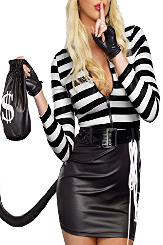 Chase Secret Women's Cat Burglar Halloween Costume