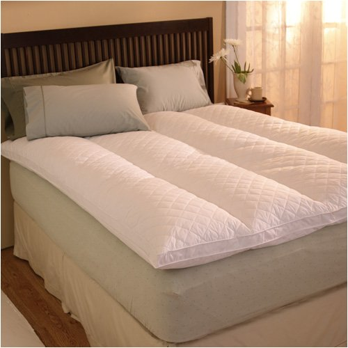 Buy Pacific Coast EuroRest Full Feather Bed