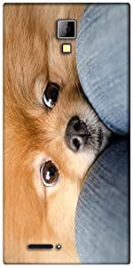 Snoogg Chihuahua Haha Designer Protective Back Case Cover For Micromax Canvas Express A99