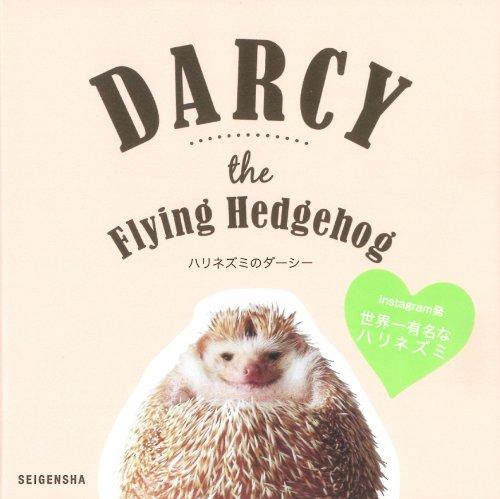 ハリネズミのダーシー ―Darcy the Flying Hedgehog