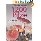 1200 Pilze