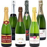 本格シャンパン製法の極上の泡6本セット((W0GX69SE))(750mlx6本ワインセット) ランキングお取り寄せ
