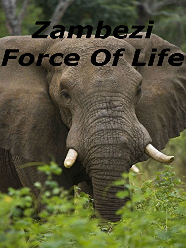 Zambezi Force Of Life