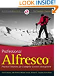 Professional Alfresco: Practical Solu...
