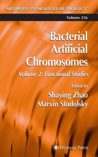 Bacterial Artificial Chromosomes: Volume 2: Functional Studies (Methods In Molecular Biology)