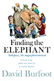 Finding the Elephant: Subspace, the Mega-phenomenon