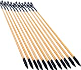 NuoYa001 X12 Striped feather target archery Decorative wooden arrows F Bald bow