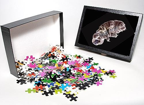 Photo Jigsaw Puzzle Of Lrds-129 From Ardea Wildlife Pets