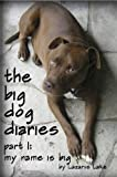 img - for My Name is Big (The Big Dog Diaries) book / textbook / text book