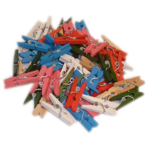 Pack of 100 Coloured Mini Wooden Craft Pegs