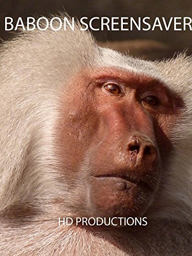 Baboon Screensaver on Amazon Prime Instant Video UK