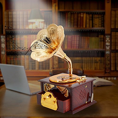 Fding Classical Trumpet Horn Turntable Gramophone Art Disc Music Box & Make up Case &Jewelry Box Home Decor (Brown) 5