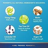 PURA-DOR-Enriching-Aloe-Vera-Essential-Oils-Premium-Organic-Argan-Oil-Shampoo-16-Fluid-Ounce