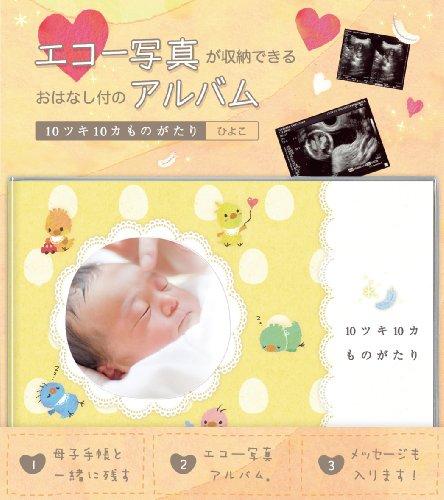 Echo Foto Album 10 Ski 10 Monate reflections<ひよこ></ひよこ>