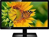 Lappymaster Powereye 1901 LED Backlit LCD Monitor (Black)