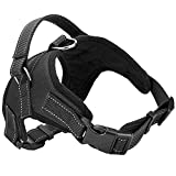 Best Dog Harness with Reflective Material Keeps Your Pet Safe While Walking and Car Rides, Instructional Guide on Product Tips, Use and FAQs Included by Roughtail Pet Supplies, Size Large, Color Black by Roughtail Pet Supplies [並行輸入品]
