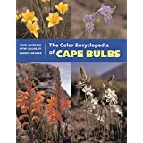 The Color Encyclopedia of Cape Bulbs ~ John Manning