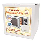 Fuseworks Beginners Microwave Kiln