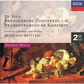 J.S. Bach: Brandenburg Concerto No.4 in G, BWV 1049 - 2. Andante