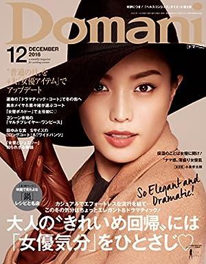Domani (ドマーニ) 2016年 12月号 [雑誌]