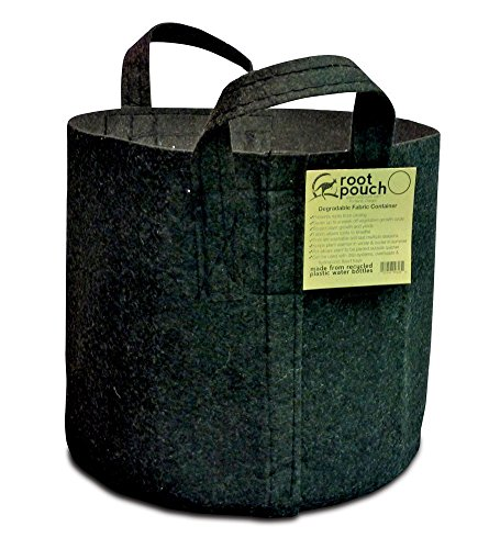 Root Pouch Boxer with Handles - 30 Gallon, Black Bundle of 10 (30 Gallon Smart Pot With Handles compare prices)
