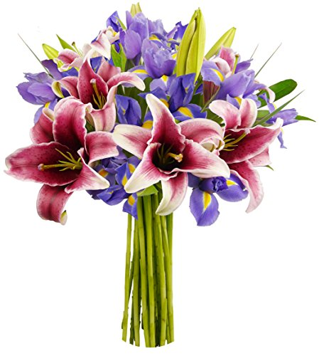 benchmark-bouquets-stargazer-lilies-and-iris-no-vase