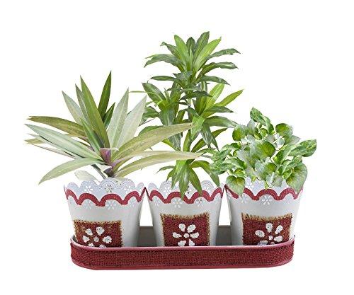 weihnachtsgeschenke-set-von-3-indoor-pflanzer-handgefertigt-mit-rosa-jute-lace-blumen-motifstray-fur