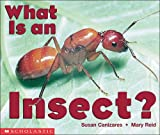 img - for What Is An Insect? (Emergent Readers) book / textbook / text book