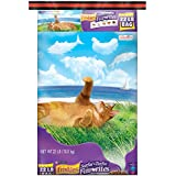 Friskies Dry Cat Food, Surfin' and Turfin' Favorites, 22-Pound Bag, Pack of 1