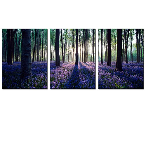 Forest Canvas Wall Art Decor,Mild Sunshine Lavender Wall Art Decor Prints Flowers Wall Decor Canvas Prints,Framed and Stretched Ready to Hang (Wall Decor Nature compare prices)
