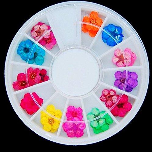 ドライフラワー 12色 ケース付き ネイル レジン 用 押し花