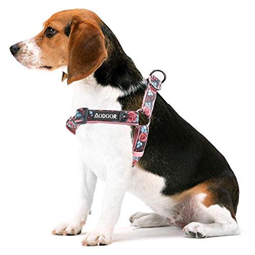 Ultra-Soft Hundegeschirr Softgeschirr Brustgeschirr Hunde Geschirr Sicherheitsgeschirr Gänseblümchen Pfingstrosen und Rosen M 2cm 50-65cm