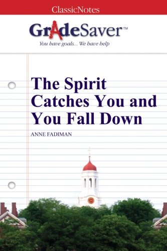 The spirit catches you and you fall down essay