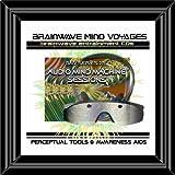 Ultra Deep Trance Brainwave Session