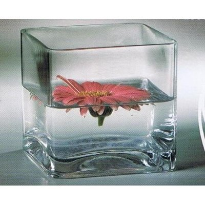 "12pc Clear Square Glass Vase Cube 5 Inch - 5"" X 5"" X 5"" - Twelve Vases"