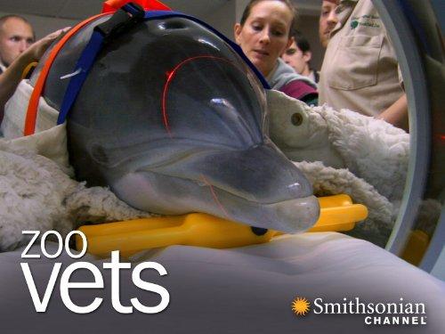 Zoo Vets Season 1
