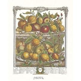 Twelve Months of Fruits, 1732April Poster Print by Robert Furber (17 x 22)