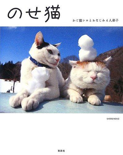 のせ猫 かご猫シロとおなじみ4人弟子