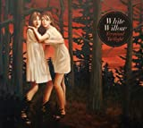 Terminal Twilight by White Willow (2011) Audio CD