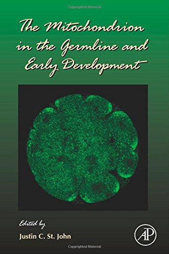 The Mitochondrion In The Germline And Early Development, Volume 77 (Current Topics In Developmental Biology)