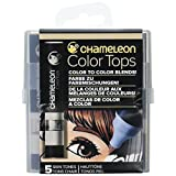 Chameleon Art Products Chameleon Color Tops, Skin Tones 5-Pen Set