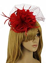 KCMODE Womens Mesh Net Flowers Hair Fascinator Hat Red