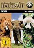 Hautnah - Elefanten,Bären und Löwen title=