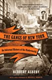 img - for The Gangs of New York: An Informal History of the Underworld (Vintage) book / textbook / text book