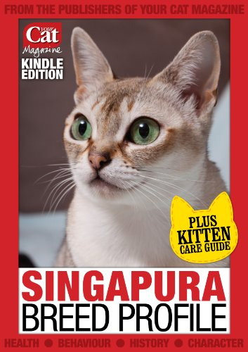 Singapura Breed Profile (Your Cat Magazine Breed Profiles)