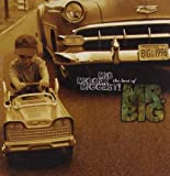 Big, Bigger, Biggest! The Best of Mr.Big