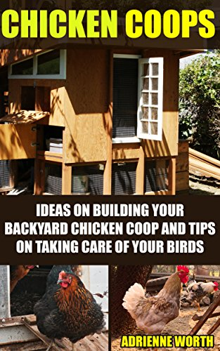 chicken-coops-ideas-for-building-your-backyard-chicken-coop-and-tips-for-taking-care-of-your-birds-c