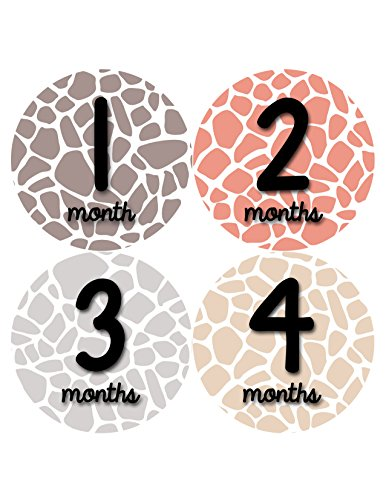 Months in Motion 351 Monthly Baby Stickers Baby Girl Months 1-12 Giraffe Print